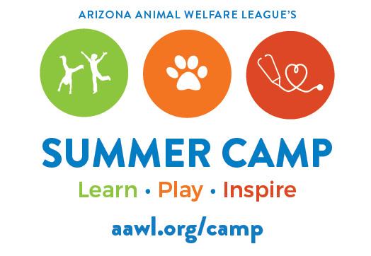 2019-summer-camp.jpg