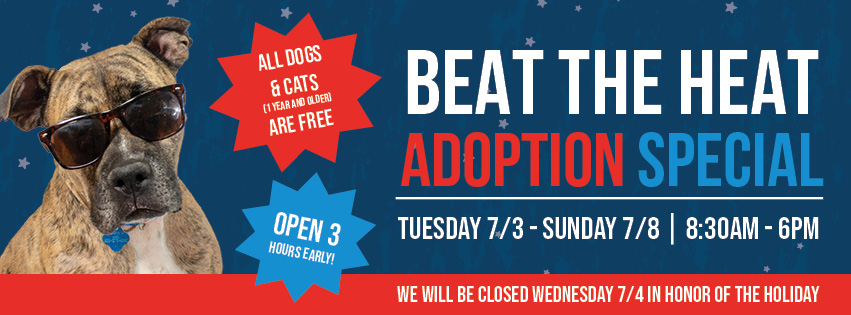 Beat the Heat Free Adoptions! | Arizona Animal Welfare League