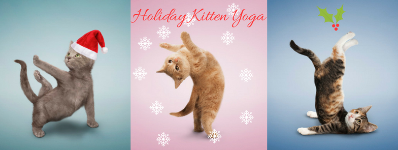Holiday Kitten Yoga